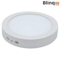 LED Plafondlamp/Wandlamp Opbouw