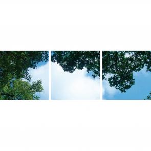 FOTOPRINT afbeelding wolk-bos verdeeld over 3 panelen 595 x 595 mm